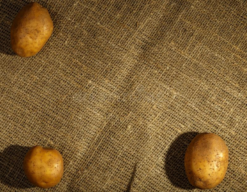 Tre patate grezze fotografia stock libera da diritti