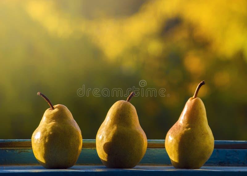 Tre pere alla finestra alla luce di autunno fotografia for Luce di pera