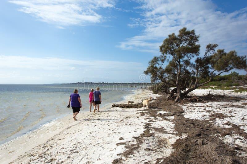 Tre personer som promenerar en skyddad bred flodmynning med hundkapplöpning arkivbilder