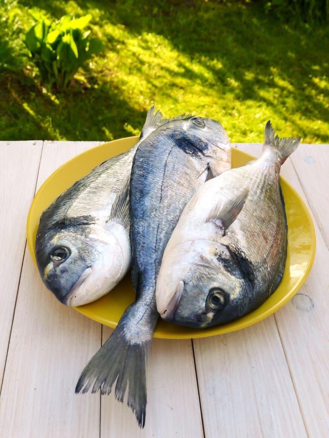 Tre pesci di dorado sul piatto giallo immagini stock libere da diritti