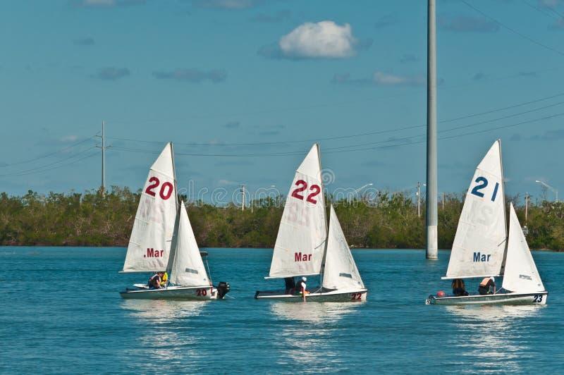 Tre, piccole barche a vela in baia posteriore del golfo del Messico immagine stock libera da diritti