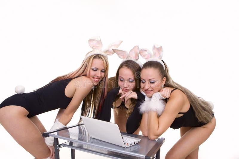 Tre playgirls sexy con le orecchie del coniglietto isolate fotografia stock libera da diritti