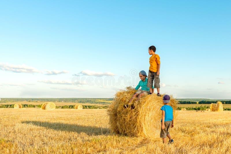 Tre pojkar går över fältet med höstackar på en solig dag royaltyfri bild