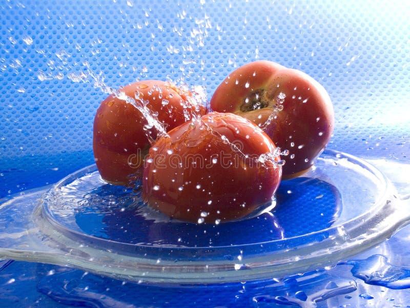 Tre pomodori fotografia stock