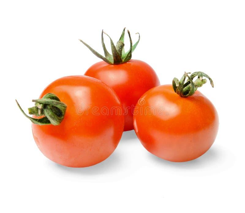 Tre röda körsbärsröda tomater med gröna grova spikar på en vit isolerad bakgrund Närbild fotografering för bildbyråer