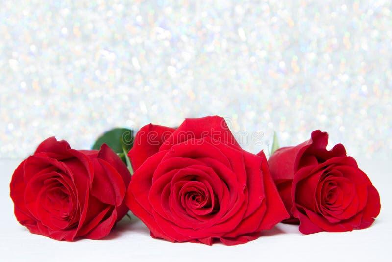 Tre röda rosor med bokebakgrund kopieringsutrymme - valentin och 8 moder Women' för mars; s-dagbegrepp royaltyfri foto
