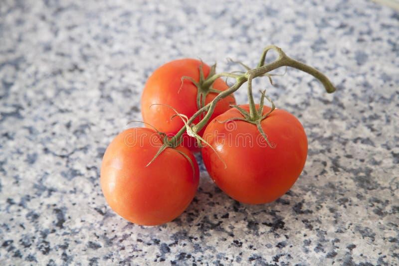 Tre röda tomater på en filial royaltyfri fotografi