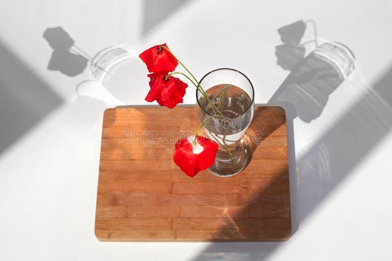 Tre röda vallmoblommor i exponeringsglasvas med vatten på den vita tabellen och träbakgrund med kontrastsolljus och skuggor stäng royaltyfria bilder