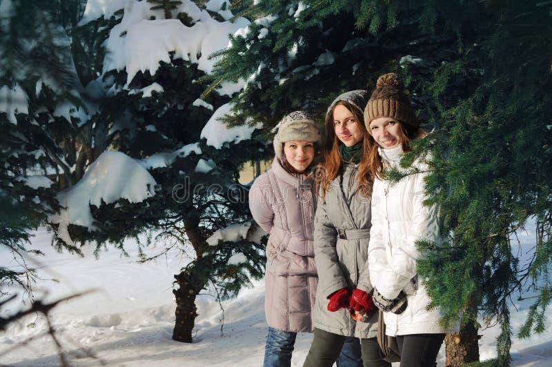 Tre ragazze fra i brunch attillati nell'inverno fotografia stock