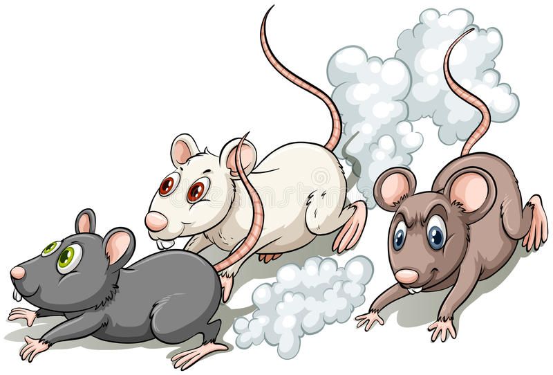 Tre ratti illustrazione di stock