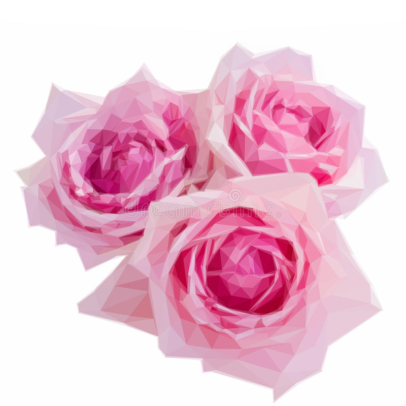 Tre rosa blommande rosor royaltyfri illustrationer