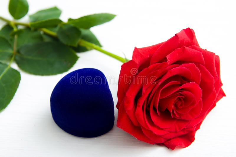 Tre rose rosse e contenitore attuale di gioielli con il fondo del boke spazio della copia - concetto di giorno delle donne della  fotografie stock