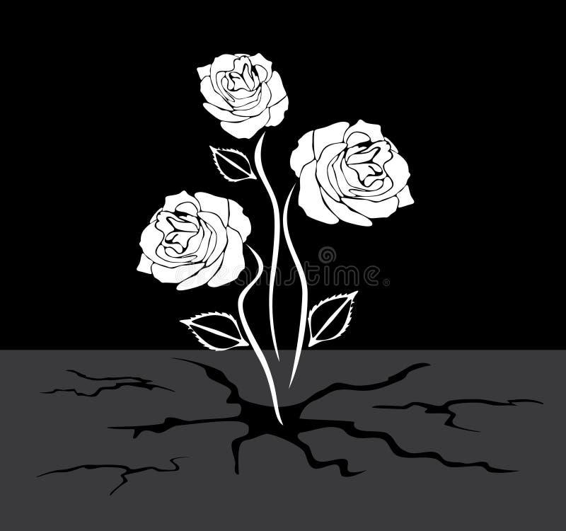 Tre rose si sviluppa attraverso l'asfalto royalty illustrazione gratis