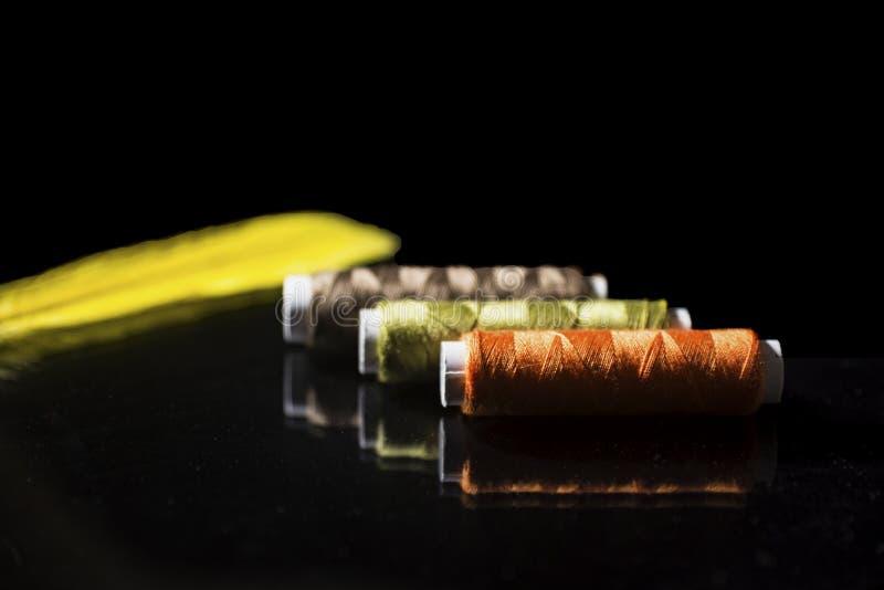 Tre rullar i höstfärger på svart bakgrund med en gul fjäder, slut upp royaltyfri fotografi