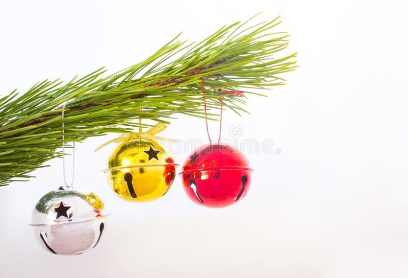 Tre rulli su un ramo dell'albero di Natale immagini stock libere da diritti