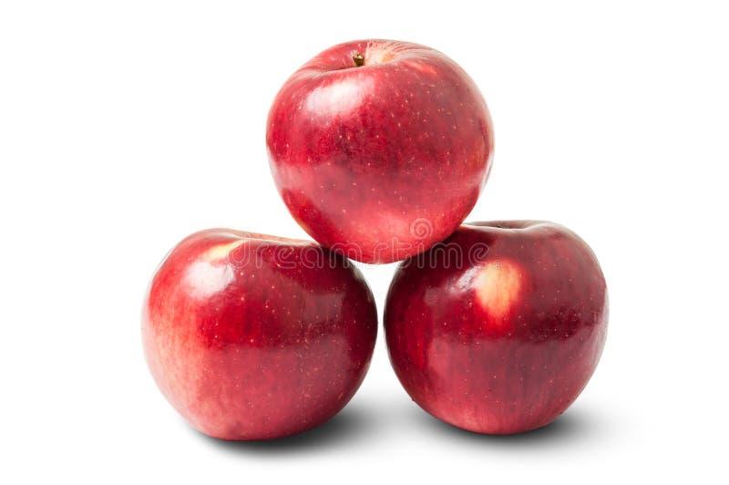 Tre skinande röda höstäpplen royaltyfri fotografi