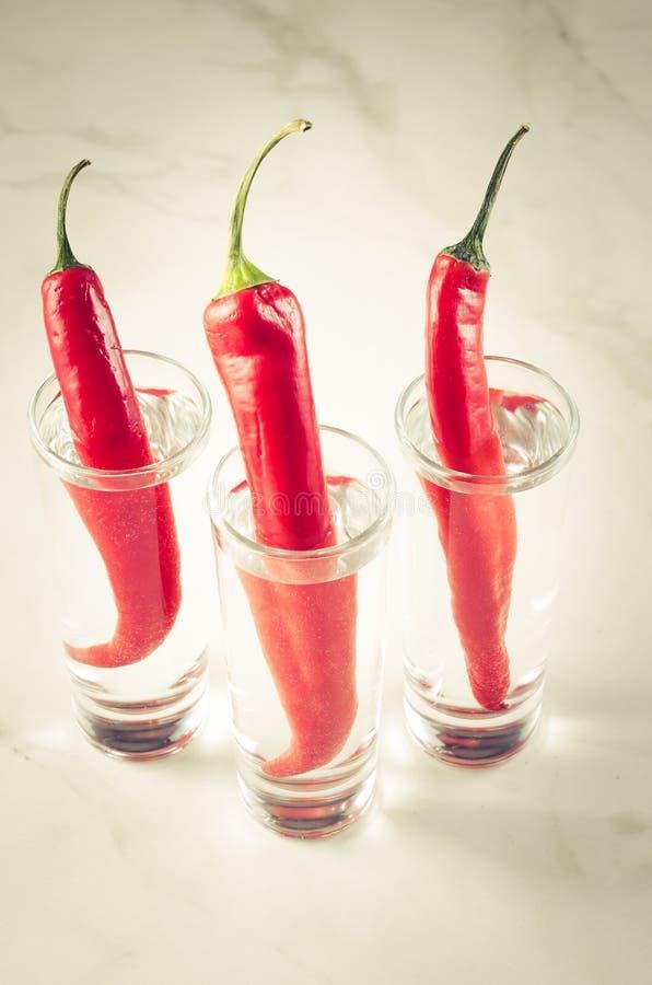 tre skott av vodka och peppar för röd chili/tre skott av vodka och peppar för röd chili på en vitmarmorbakgrund Selektivt fokuser royaltyfria foton