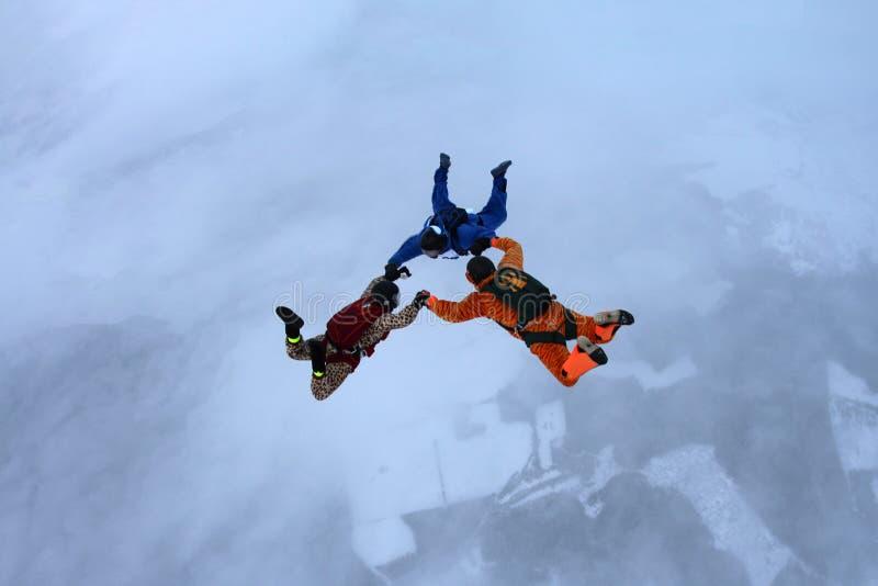 Tre skydivers i vinterhimlen royaltyfri fotografi