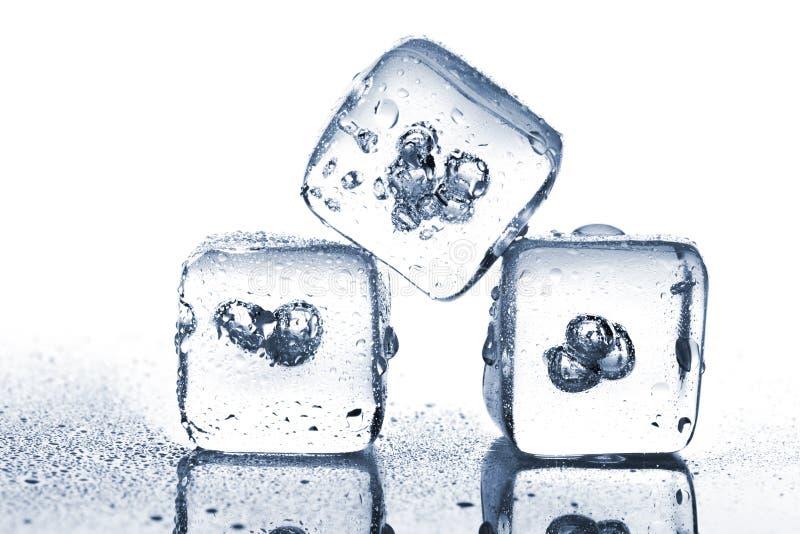 Tre smältande iskuber med vattendagg arkivbild