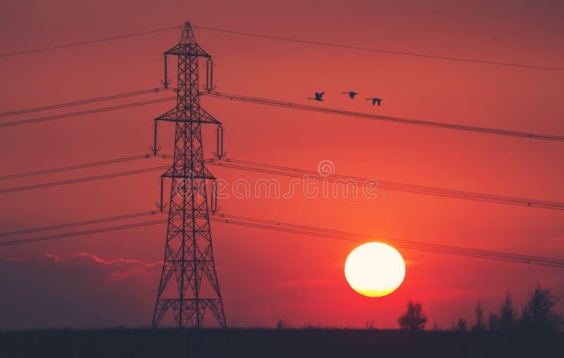 Tre - solnedgångpylon arkivbild