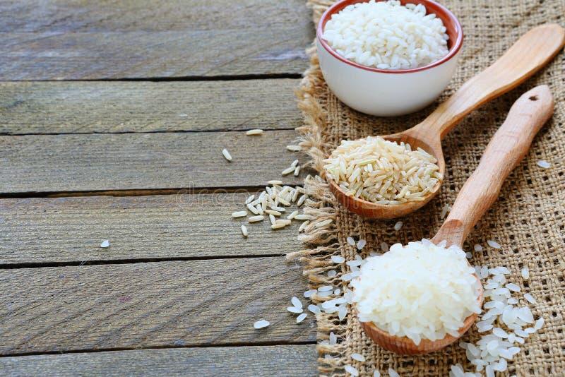 Tre sorter av rå ris på träskeden royaltyfri bild