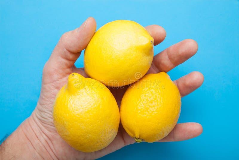 Tre stora citroner i handen isoleras på en blå bakgrund arkivfoto
