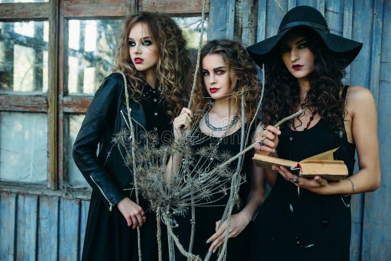 Tre tappningkvinnor som häxor royaltyfri bild
