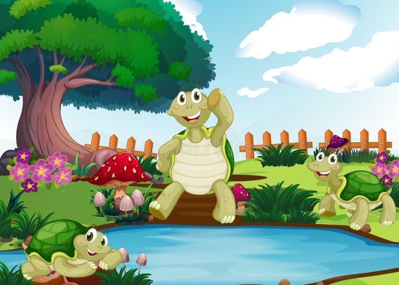 Tre tartarughe dallo stagno illustrazione di stock