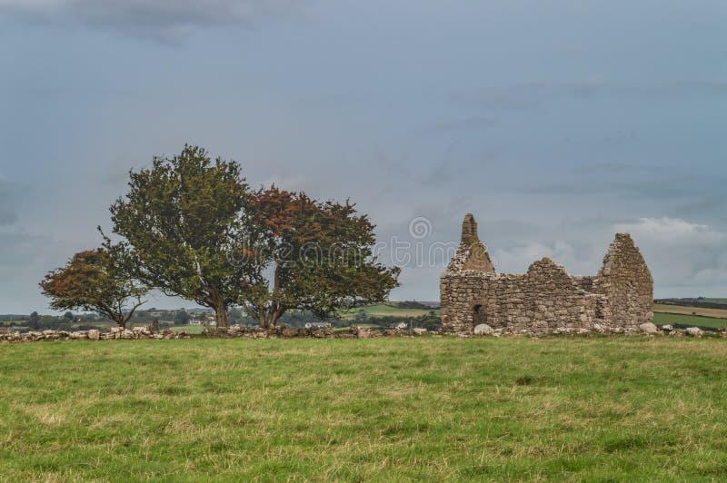 Tre träd på capelen Lligwy, Anglesey fotografering för bildbyråer
