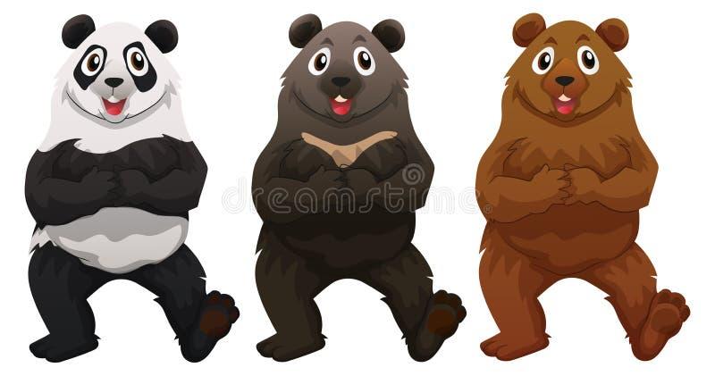 Tre typer av björnar stock illustrationer