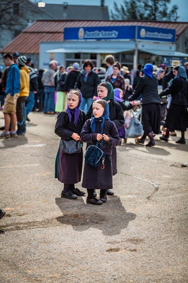 Tre unga Amish flickor royaltyfria foton