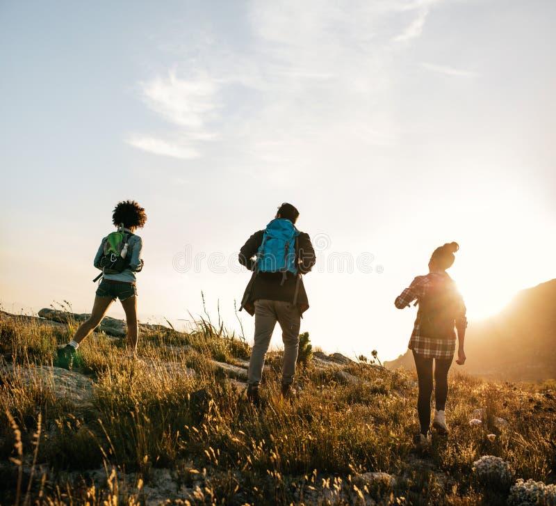 Tre unga vänner på ett land går fotografering för bildbyråer