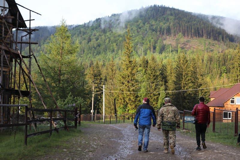 Tre uomini fanno un'escursione in foresta con lo zaino per trekking fotografia stock libera da diritti