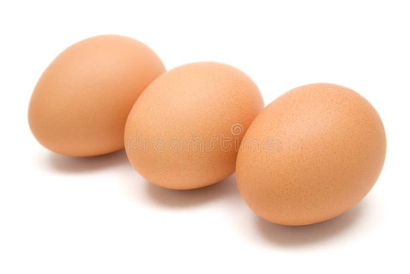 Tre uova di Brown immagini stock libere da diritti