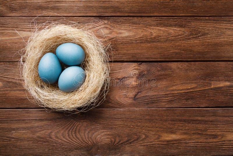 Tre uova di Pasqua blu dipinte dall'ibisco, in un nido con le piume su un fondo di legno Simbolo di Pasqua Copi lo spazio fotografie stock libere da diritti