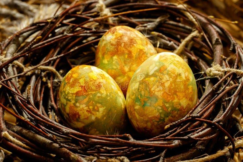 Tre uova di Pasqua si trovano in un nido nero dei rami Le uova realisticamente sono colorate ed assomigliano alle uova di un drag fotografie stock libere da diritti