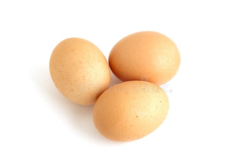 Tre uova marroni immagine stock libera da diritti