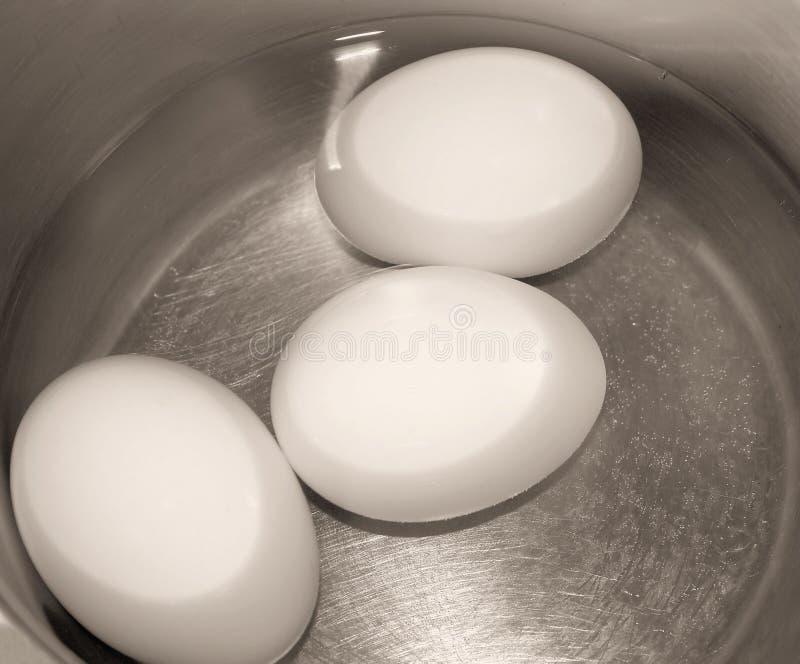 Tre uova in POT di acqua immagine stock libera da diritti