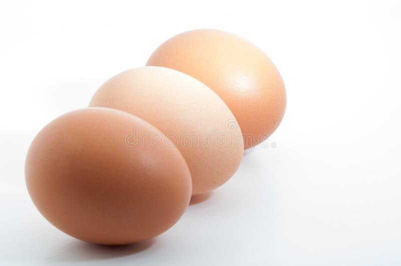 Tre uova in una fila isolate su fondo in bianco bianco immagini stock libere da diritti