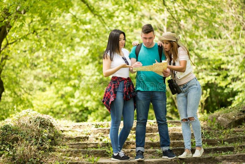 Tre vänner som ser en översikt i skogen arkivbilder