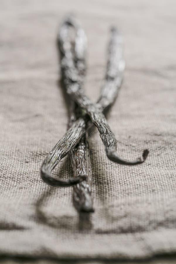 Tre vaniljfröskidor på en linnetorkduk arkivfoton