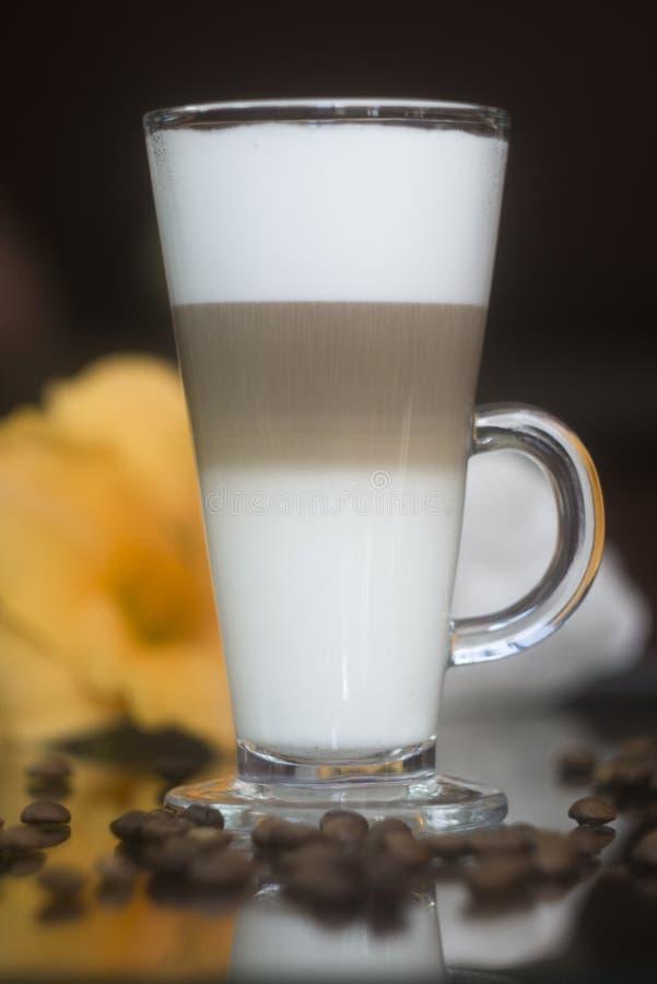 Tre-varvad Latte Mjölka kaffecoctailen royaltyfria foton