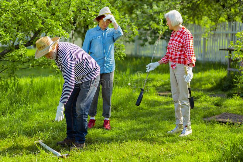 Tre vicini che amano natura verde che pianta gli alberi vicino alle case fotografie stock libere da diritti