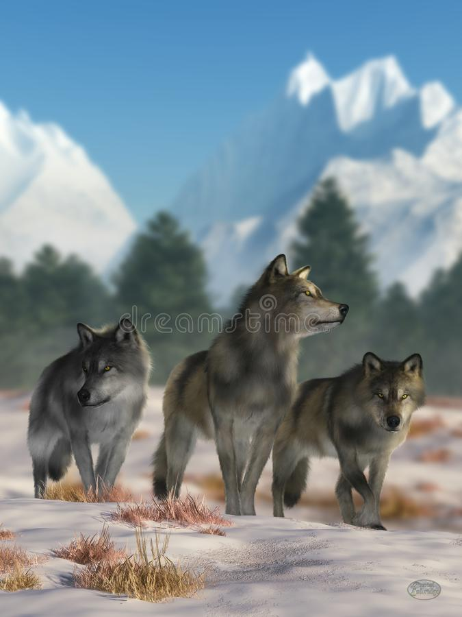 tre wolves royaltyfri illustrationer