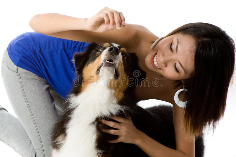 Treat Time royalty free stock images