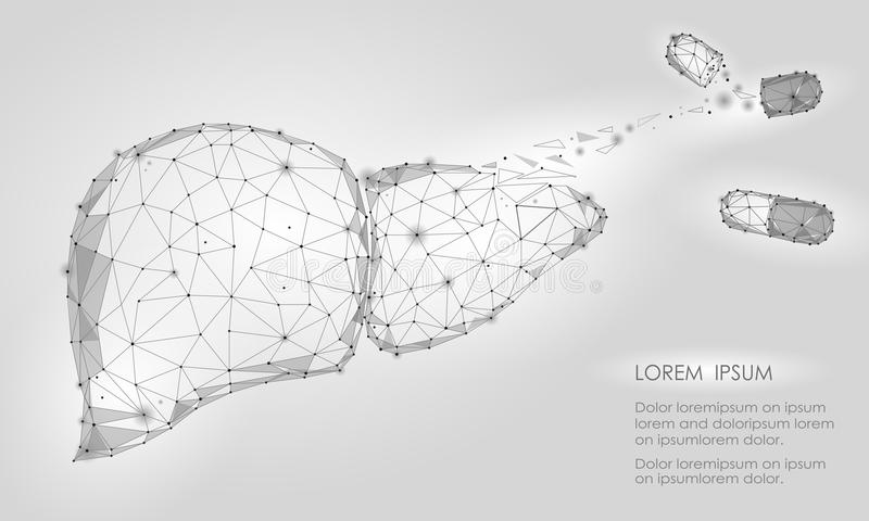 Treatment regeneration decay Human Liver Internal Organ Triangle Low Poly. Connected dots white gray technology 3d model medicine. Capsule tablet drug vector illustration