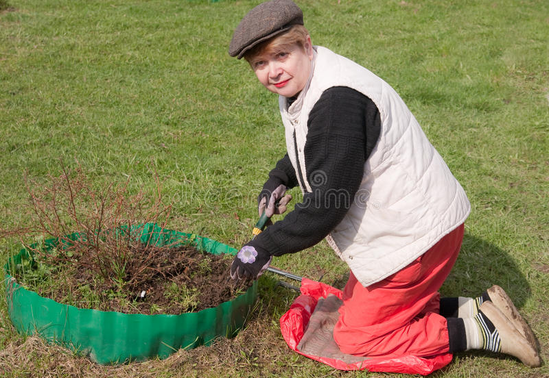 Download Treatment Of Seedlings In The Spring Stock Image - Image: 19748407