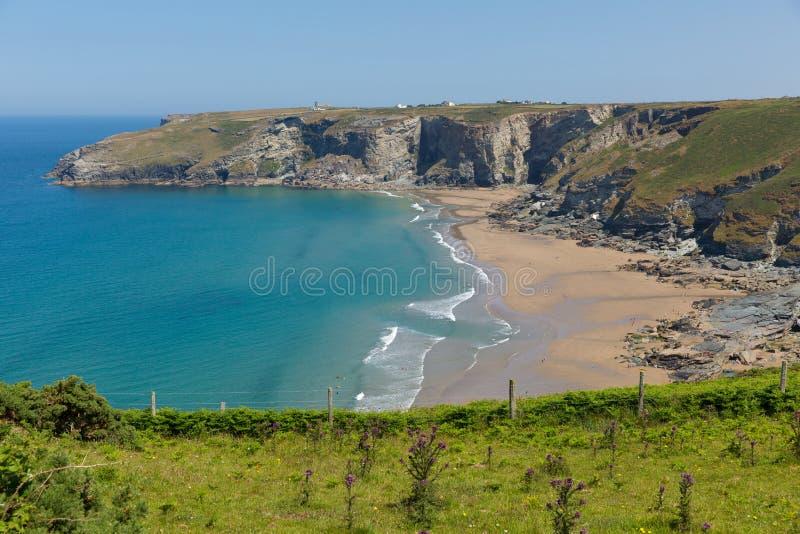 Trebarwith trådstrand och fjärd Cornwall nära Tintagel royaltyfri bild