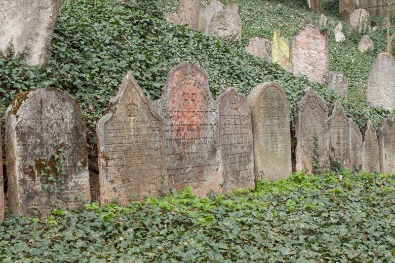 Trebic, República Checa, o 23 de abril de 2016: O cemitério judaico velho, a parte judaica velha da cidade Trebic está listado en foto de stock royalty free