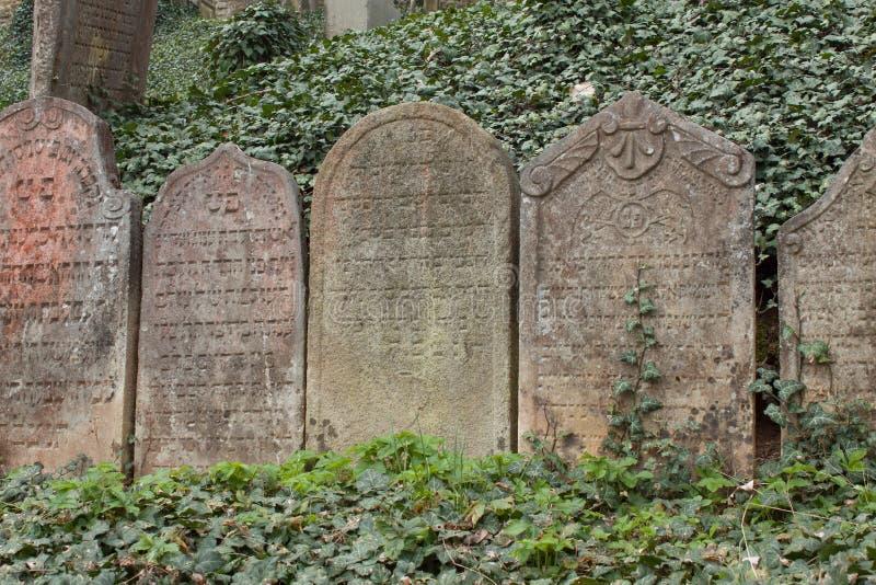 Trebic Tjeckien, April 23, 2016: Den gamla judiska kyrkogården, den gamla judiska delen av staden Trebic listas bland UNESCO royaltyfria foton